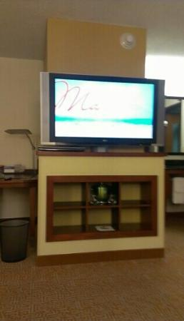 Hyatt Place Pittsburgh/Airport: tv