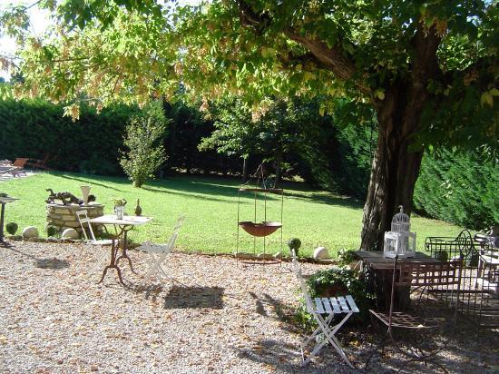Cote Provence: Garden