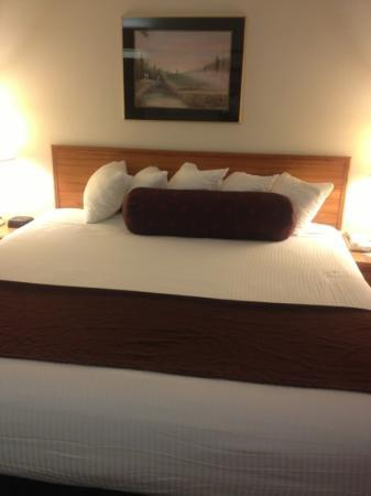 BEST WESTERN PLUS Yakima Hotel: Ended up being a great nights sleep!