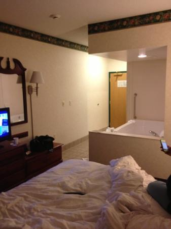 Hampton Inn Newcomerstown: room