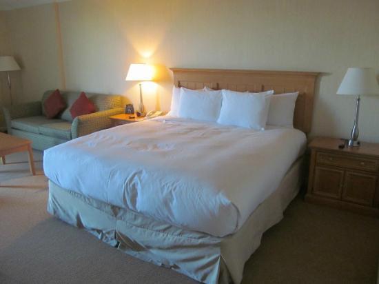 هيلتون ساكرامنتو أردن ويست: king bed