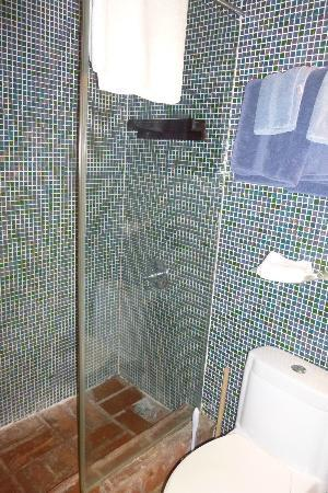 Caleta 64 Apartment: shower