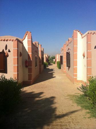 Al Baeirat Hotel: individual bungalows