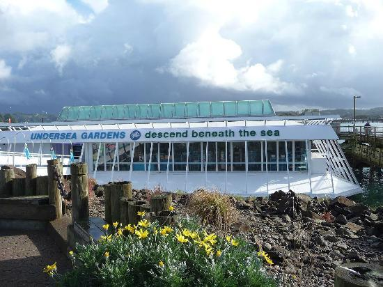 Oregon Undersea Gardens: looks nice from the outside