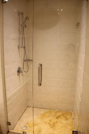 Rendezvous Hotel Singapore by Far East Hospitality: Huge shower