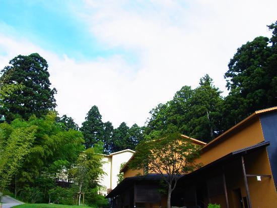 Hakone Suishoen: 緑が多いお庭。夏でも涼しい
