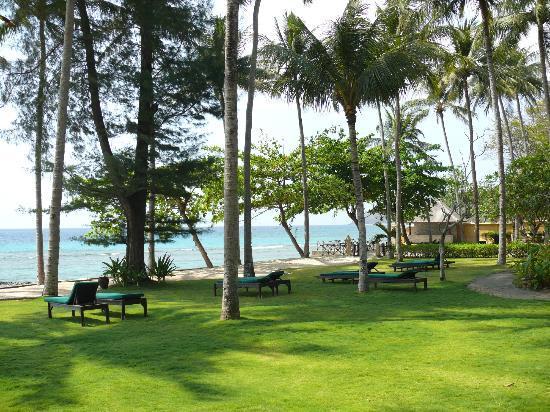 Alang-Alang Boutique Beach Hotel: giardino
