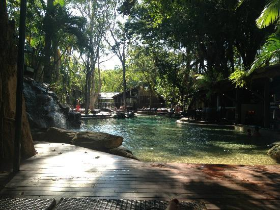 "Ramada Resort Port Douglas: beside the pool... ""with the trees"""