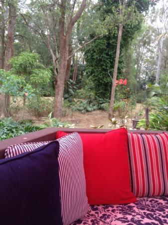 Songbirds in the Forest - Rainforest Retreat : great views and lovely grounds to walk off your lunch