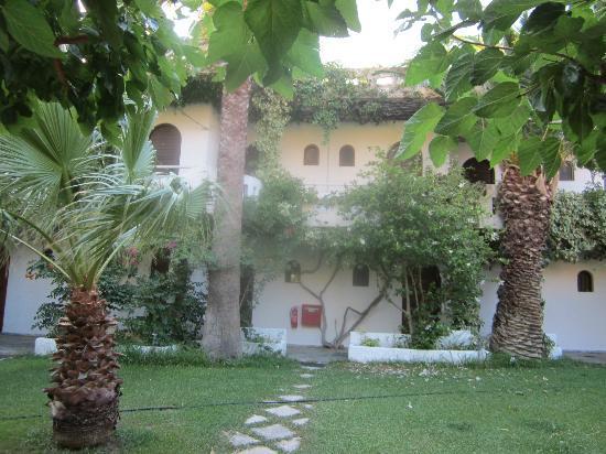 Damnoni Paradise: Front, reception