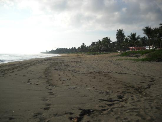 The Beach south of cabarete