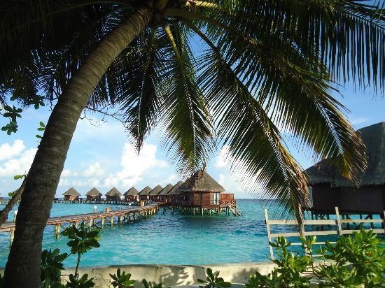 Thulhagiri Island Resort: water villa