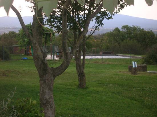 Agriturismo Bicoca: piscina in mezzo al verde