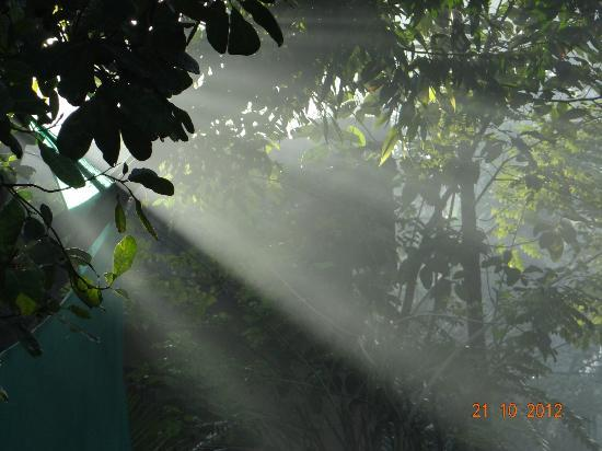 เลมอน ทรี เว็มบานาด เลค รีสอร์ท มูฮัมมา: View of local village ride on bicycle