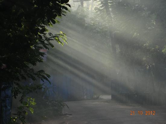 เลมอน ทรี เว็มบานาด เลค รีสอร์ท มูฮัมมา: Village ride