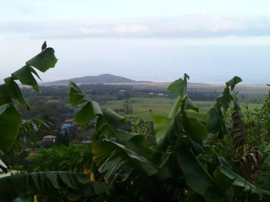 Belle Vue : our view - high on the hill overlooking the ocean and volcanic topography
