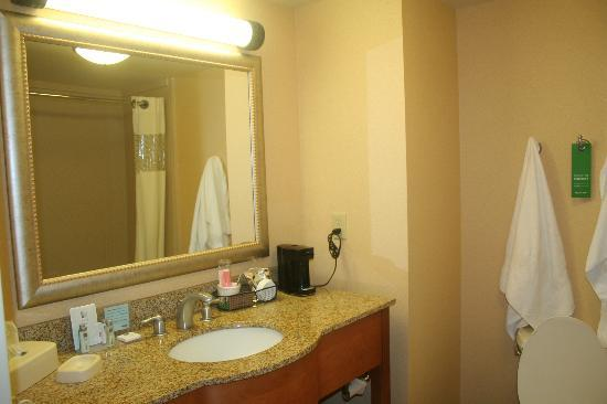 Hampton Inn & Suites Tampa East (Casino Area): Bathroom