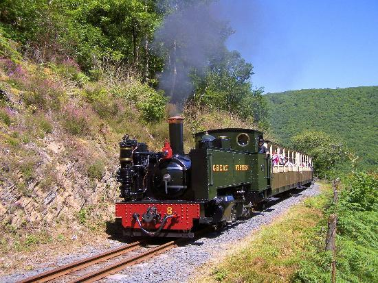 Vale of Rheidol Railway: Locomotive No 8 Llywelyn passes the Horseshoe bend