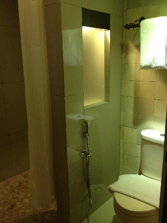 Rumah Batu Villa & Spa: bathroom - shower