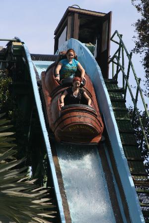 Busch Gardens Tampa: Busch Gardens