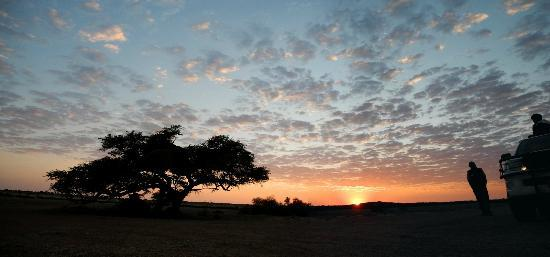 Kalahari Anib Lodge: sunrise at Morning drive