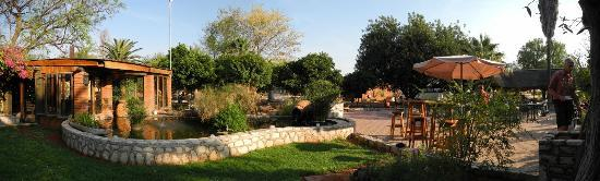 Kalahari Anib Lodge: garden area