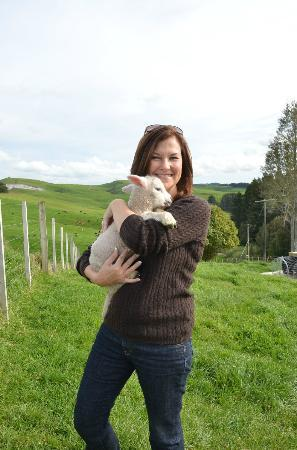 Kamahi Cottage: Playing with the lambs