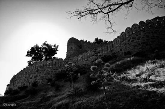 Kumbhalgarh Fort: Fort