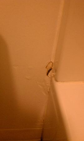 Watkins Glen Villager Motel: Holes in the wall next to the shower