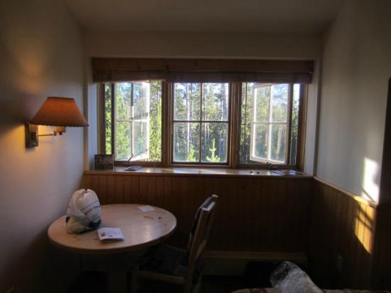 Dunraven Lodge: View from the window
