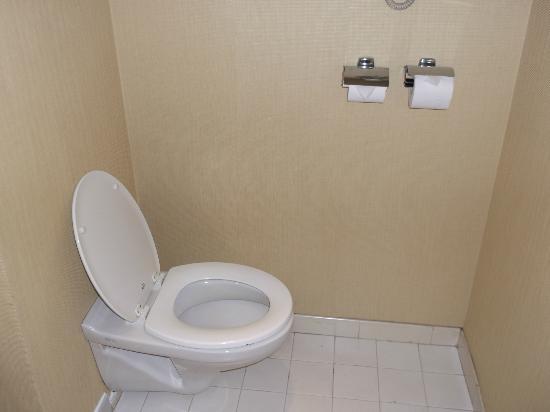 Sheraton Lagos Hotel: toilet
