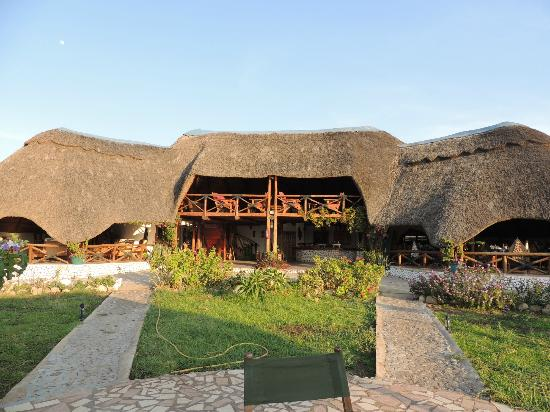 Manyara Wildlife Safari Camp: vista della reception