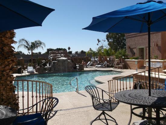 Hilton Phoenix/ Mesa: pool