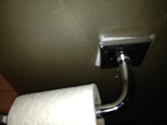 The Ashton Hotel: Toilet paper falling off wall
