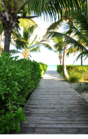Grace Bay Suites: Walkway to the beach