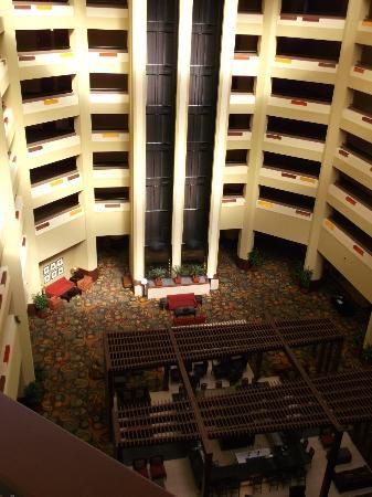 Hilton Phoenix/ Mesa: elevators