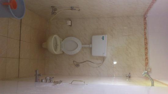 Nisarg Tourist Home : Bathroom