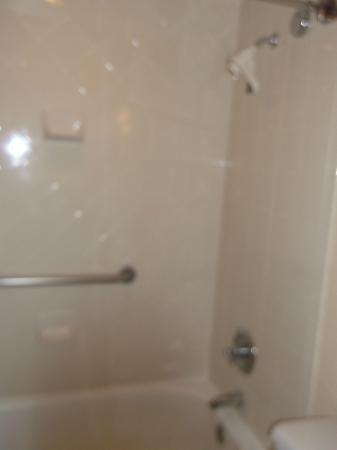 Hilton Phoenix/ Mesa: shower