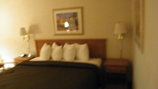Best Western El Rancho Palacio: room