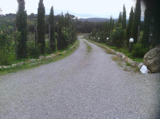 Antico Borgo il Cardino: Entrata