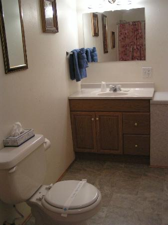 Creekside Country Resort : Most cabins have 2 bathrooms with tub and shower. Picture is the master bath.