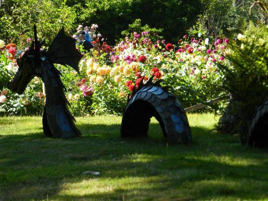 Mendocino Coast Botanical Gardens: Dragon sculpture amid dahlias