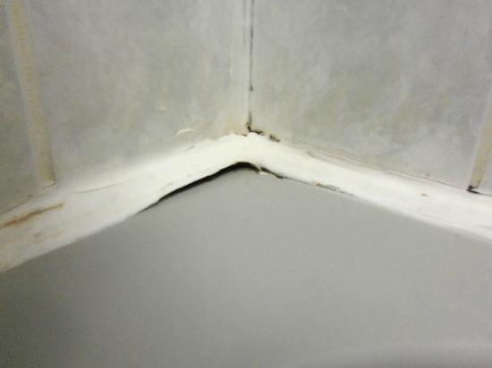 Gwesty Glan Aber Hotel: Dirty Bathroom