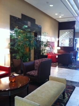 Hilton Charlotte University Place照片