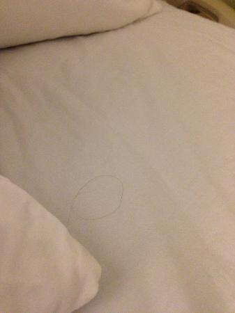 SpringHill Suites Seattle Downtown/South Lake Union: another hair on my bed