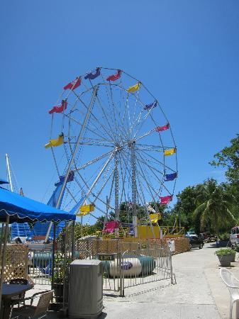 SpringHill Suites Miami Airport East/Medical Center: ferris wheel on top