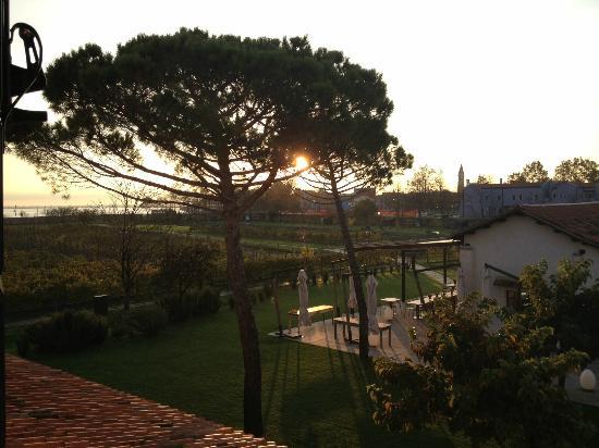 Venissa - Wine Resort: View of the restaurant and vineyard