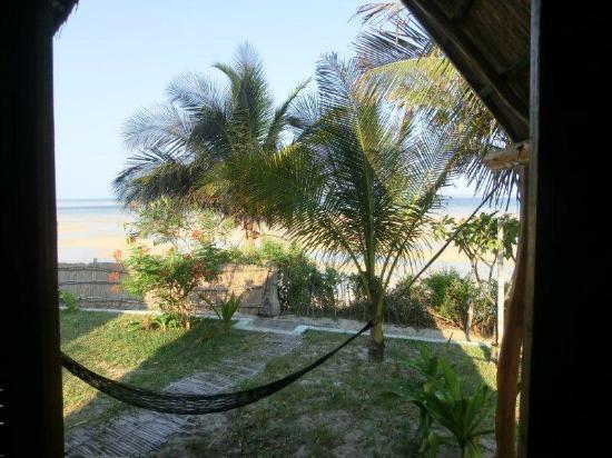 Baobab Beach Backpackers: beach