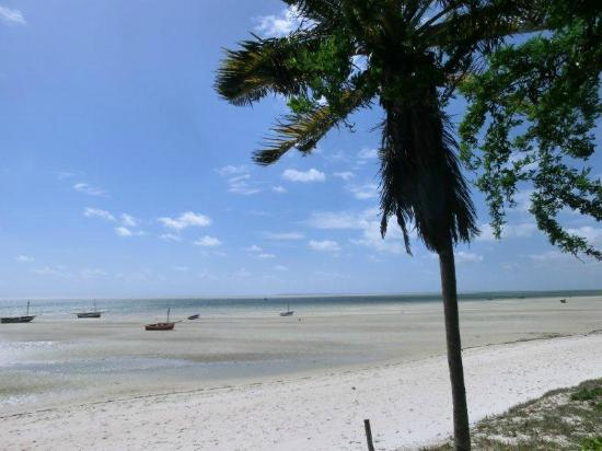 Baobab Beach Backpackers: low tides time