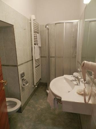 Hotel Windsor: Room 406 -- Attractive Bathroom
